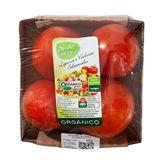 Tomate Salada Orgânico Bandeja 500g
