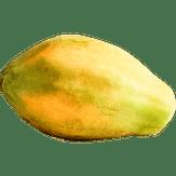 Mamão Papaya Golden
